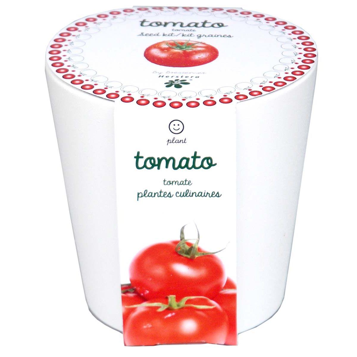 Faire Pousser Tomates En Pot tomates à faire pousser en pot 12 cm céramique blanc