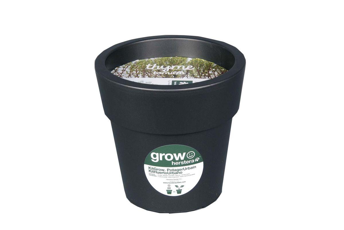 Kit thym à faire pousser en pot 24 cm anthracite