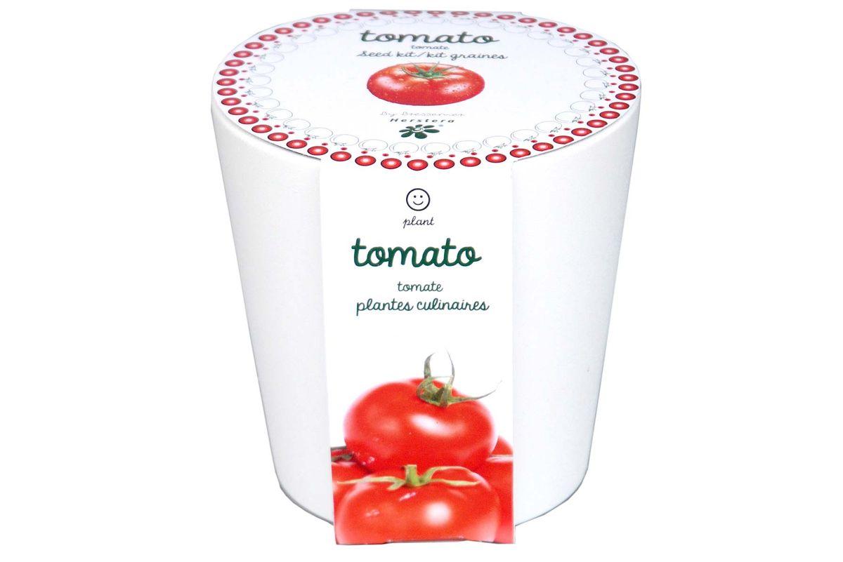 Tomates à faire pousser en pot 12 cm céramique blanc