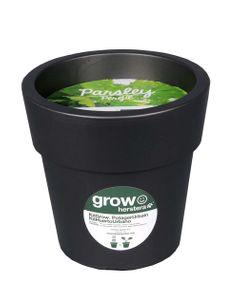 Kit persil à faire pousser en pot 24 cm anthracite